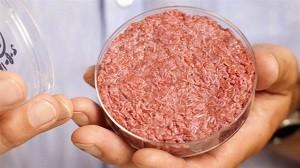 lab-burger